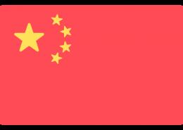 中国驾照翻译