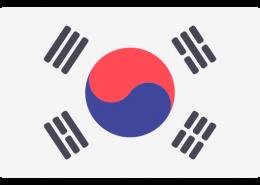 韩国驾照翻译