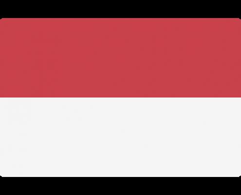 印尼语驾照翻译