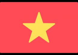 越南语驾照翻译