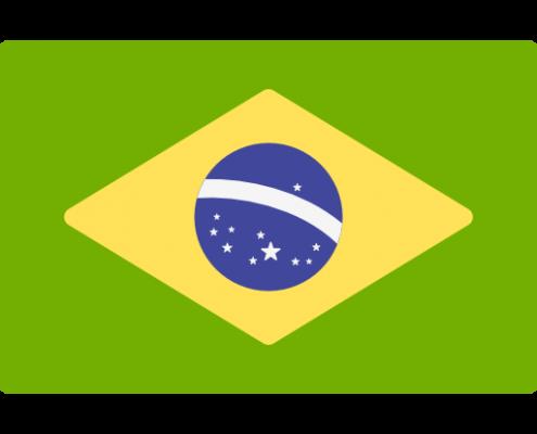 巴西驾照翻译
