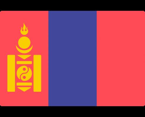 蒙古国驾照翻译