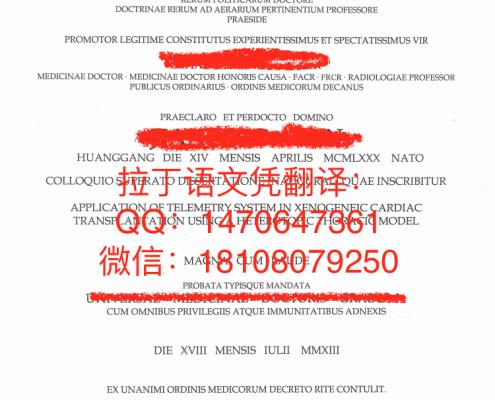 慕尼黑大学拉丁语文凭翻译